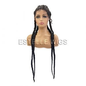 EDEN – Black Braided Lace Front Wig